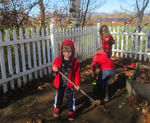 the red and blue raking crew