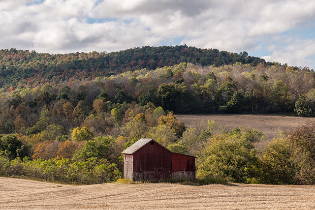 Appalachian barn in a Kentucky hollow
