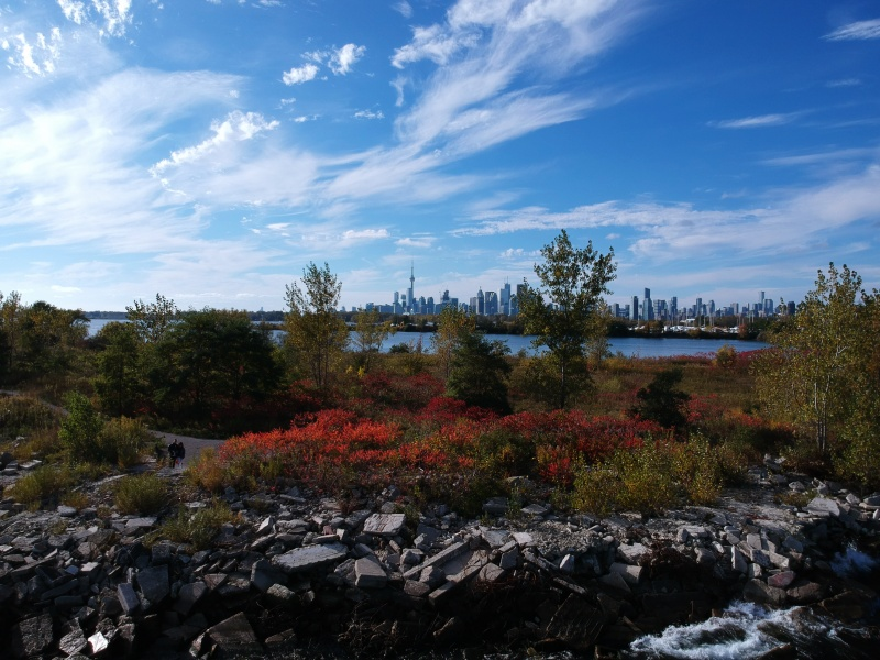 Tommy Thompson Park Fall