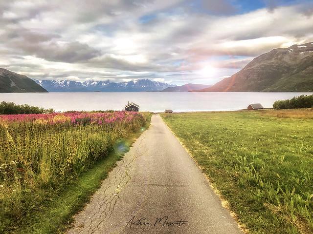 Arctic Fjordcamp - Burfjord (Norway)