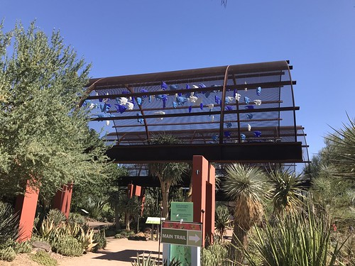 Desert Botanical Garden-Phoenix-20191020-1997
