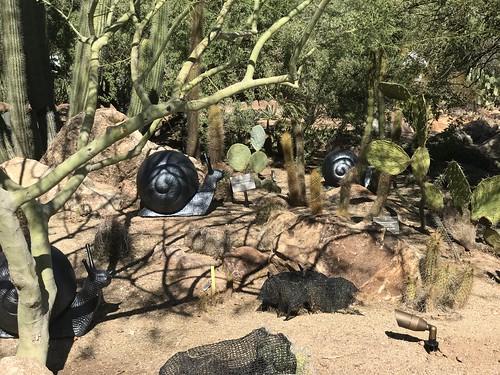 Desert Botanical Garden-Phoenix-20191020-2013