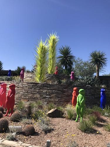 Desert Botanical Garden-Phoenix-20191020-1949
