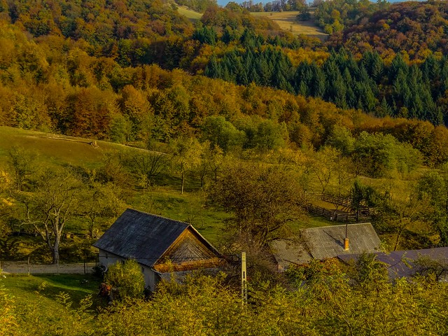 The colorful Autumn season in the countryside. The wooden houses exude a genuine rural feeling.