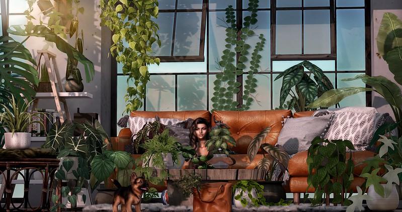 Plant Lady (415)