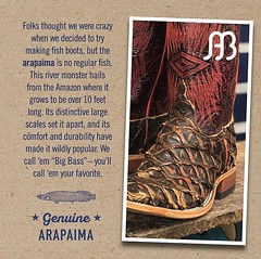 Some of my favorite boots! @andersonbean #beanitlikeyoumeanit