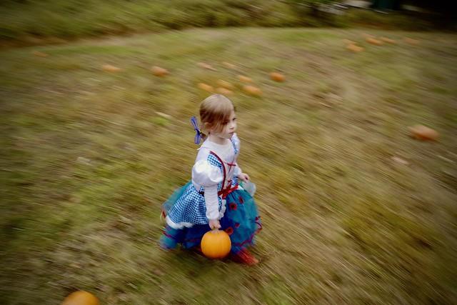 Julienne Picking Pumpkins
