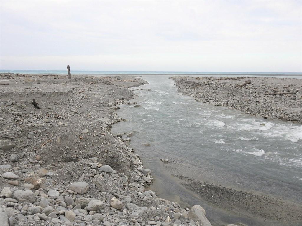 保育日本禿頭鯊 太麻里溪、金崙溪公告禁漁期