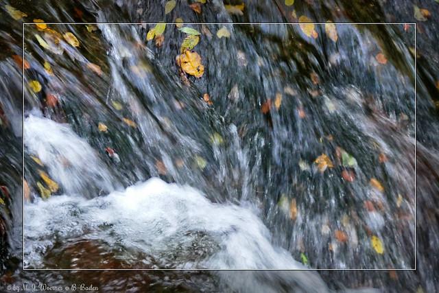 Autumn Impressions 01 / 13