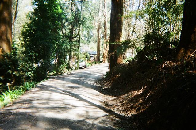 Stanley Street (photo 8)