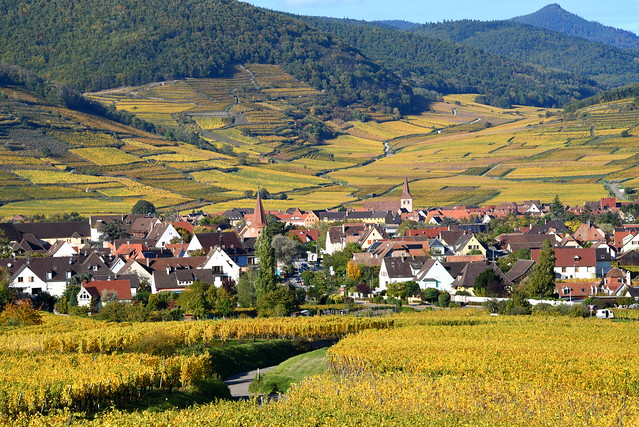 Kientzheim (Alsace, F)