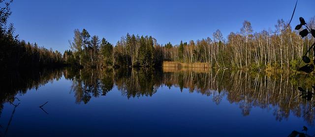 Seespiegelung im Herbst