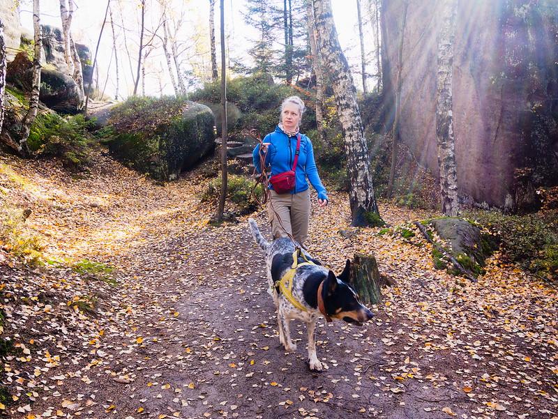 Broumowskie ściany jesienią pies