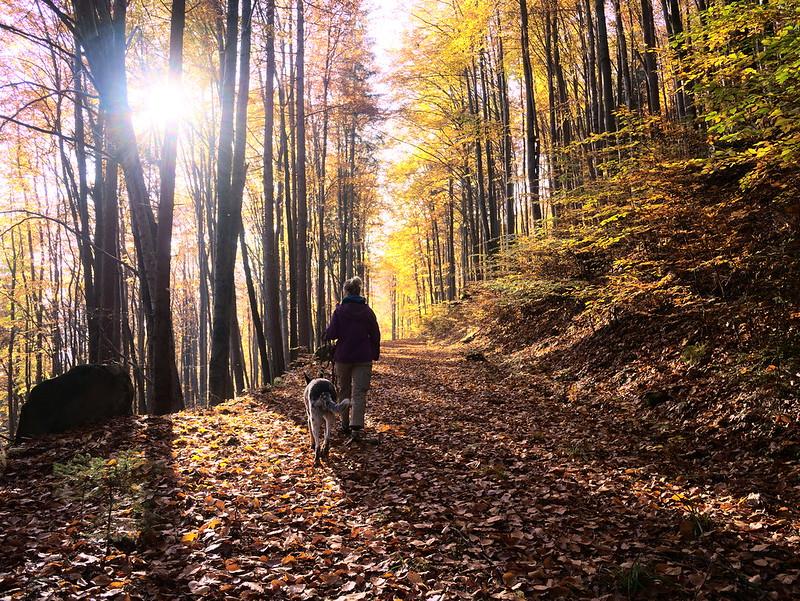 Broumowskie ściany jesień