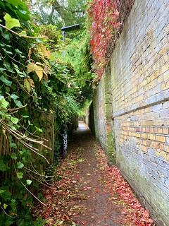 Hampstead Path
