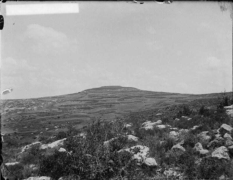 Tel-el-Ful-1917-19-05995v
