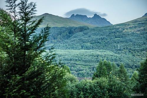 "Peering through the forest at Arrochar, across Loch Long to Ben Arthur or ""The Cobbler."""