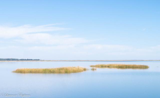 High tide - Bombay Hook, Delaware