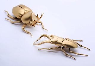 FUJIMI 《自由研究系列 》25 EX-1 生物篇「鍬形蟲vs獨角仙 對決ver.」黃金版(クワガタムシvsカブトムシ 対決セット 特別仕様)