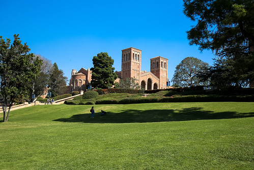 UCLA - Overlooking Royce Hall