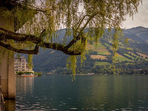 landscape water lake zellamsee austria tree outside gx1 canon