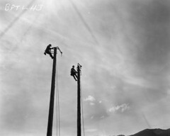 Workers on power poles for Boundary Project, 1963