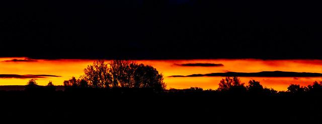 Sonnenaufgang in den Lippeauen