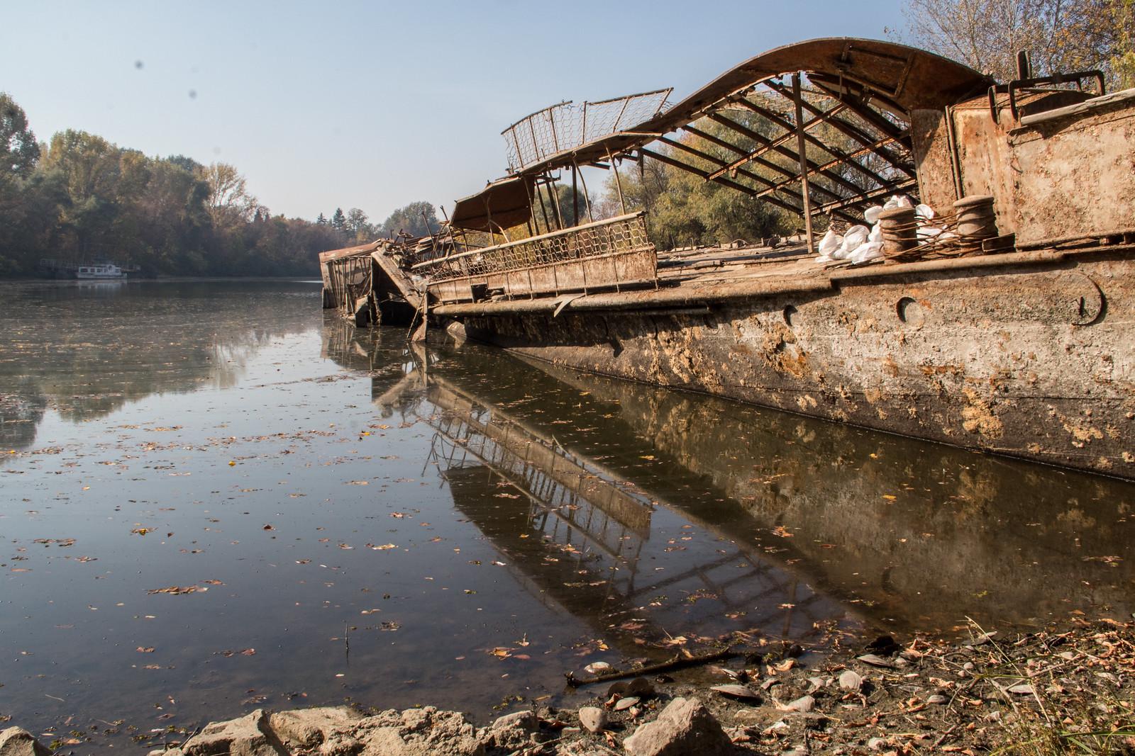 Kiemelik a vízből a Szőke Tiszát