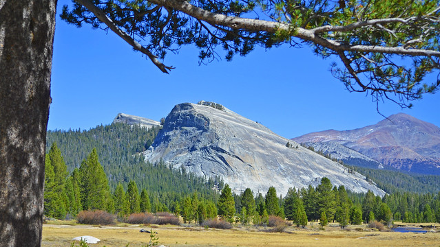 Lembert Dome over Tuolumne Meadows, Yosemite 10-10