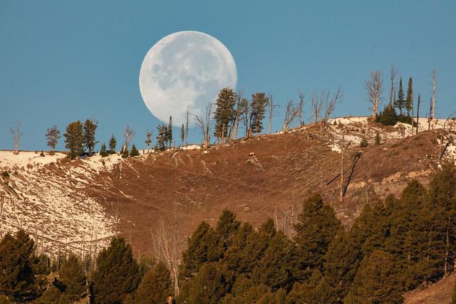 Moon setting over Sepulcher Mountain