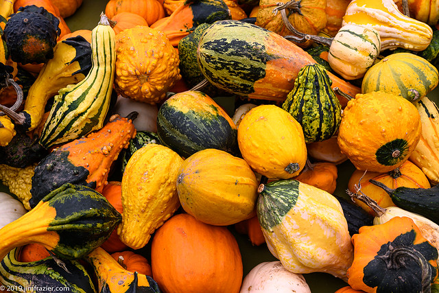 Nothing like a pile of gourds (none of which we bought)