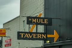 The Mule Tavern