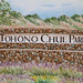 Tohono Chul : Field trip Oct 2019