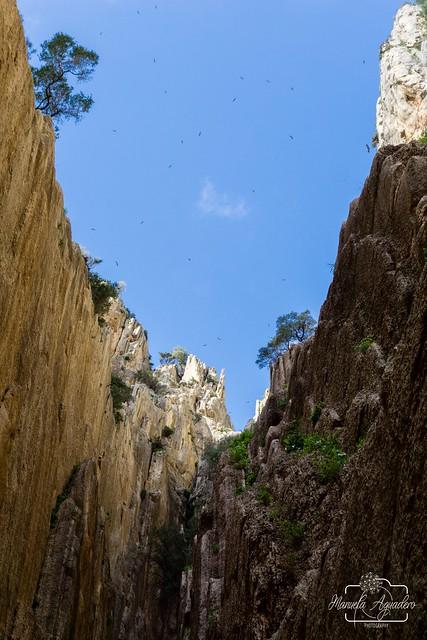 Vuela, vuela alto, todo lo que puedas... pero siempre con los pies en la tierra ❤️📷   #caminitodelrey #málaga #andalucía #españa #spain #turismospain #rocas #rocks #cielo #heaven #nubes #clouds #paisaje #landscape #senderismo #trekking #natur