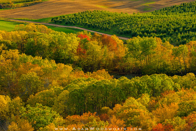 Fall in the Annapolis Valley
