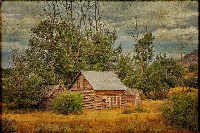 A Log House