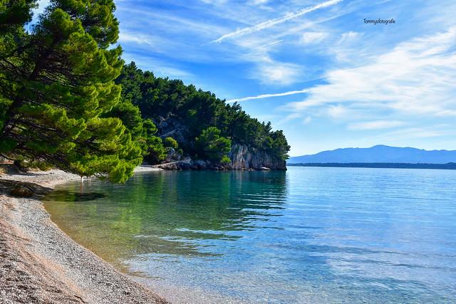 Does anyone like to swim here? Beach Zivogosne