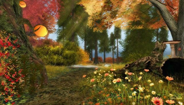 *-.Angelhaven.-* Autumn Morning Wood