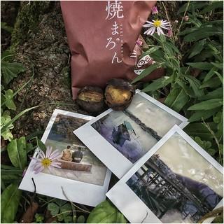 Instant Memories ... Arashiyama, Japan