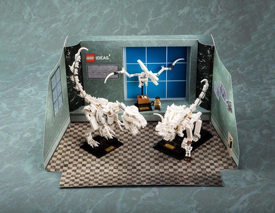 Exclusive display Box : LEGO IDEAS Dinosaur Fossils