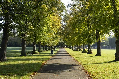 Beverley Park, New Malden