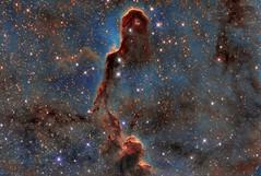 Trunk Nebula (VDB142)