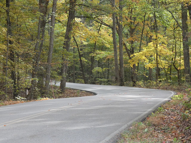Brown County State Park Fall Colors 10202019