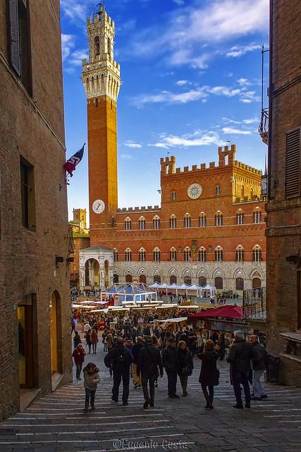 Siena - Piazza del Campo - Square del Campo