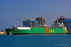 LNG BONNY - IMO 7708948