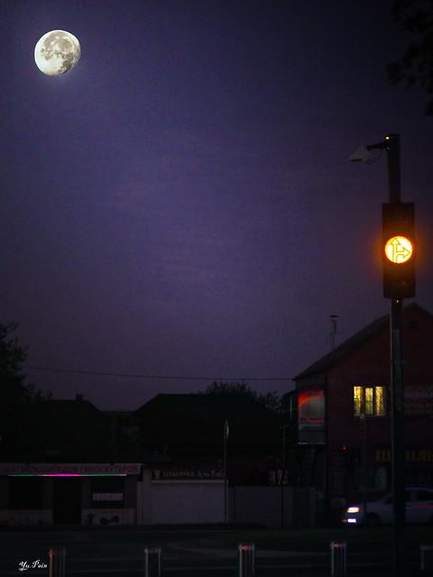 Лунный свет. Moonlight