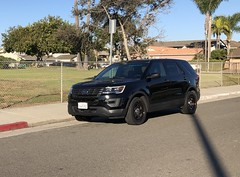 Ford Utility Police Interceptor in my neighborhood