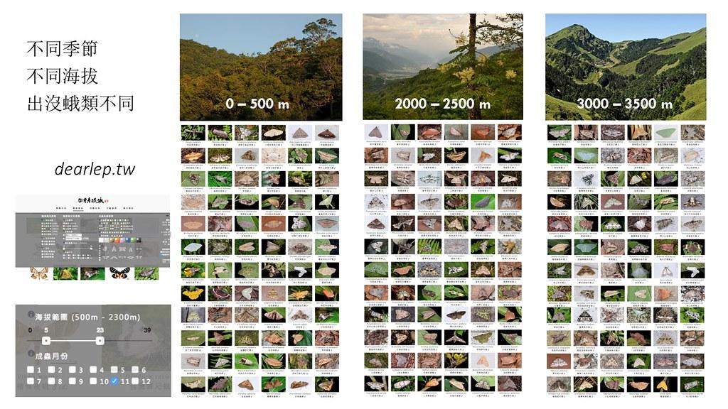 中研院結合生物多樣性研究中心、資訊所以及特生中心長期蛾類調查資料,解答環境梯度與物種色彩多樣性的關聯。圖片來源:中研院簡報