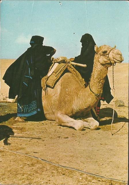 Veiled Beduin women loadin jugs on camels back