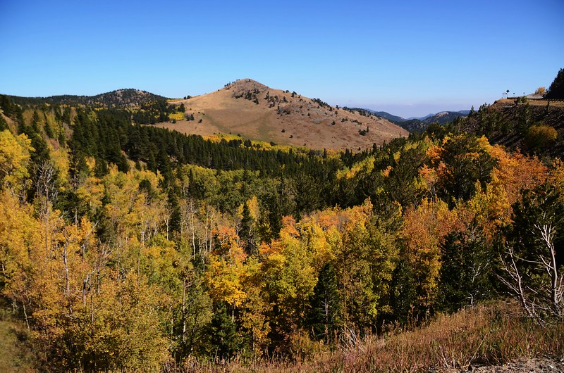 Fall Foliage in Peak to Peak Scenic Byway, Colorado (8)